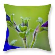 Cool Blue Fuzzy Feeling Throw Pillow