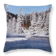 Cool Throw Pillow