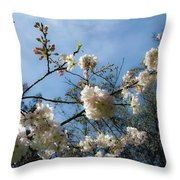 Cool Cherry Blossoms Throw Pillow