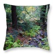 Cool Creek On Mt Tamalpais Throw Pillow