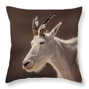 Cool Down Throw Pillow