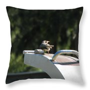 Cool Drink On A Hot Day Throw Pillow