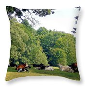 Cool Gathering Throw Pillow