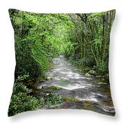 Cool Green Stream Throw Pillow