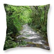 Cool Green Stream Throw Pillow