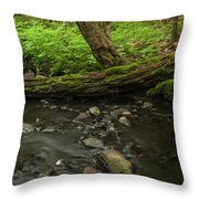 Cool Rest Throw Pillow