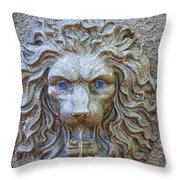 Cool Sip Of Water Throw Pillow