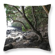 Cool Spot Throw Pillow