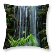 Cool Spot On A Hot Day Throw Pillow