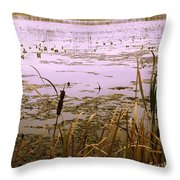 Cool Sunset At White City Throw Pillow