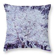 Cool Sunset Essence Of Winter Throw Pillow