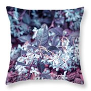 Cool Sunset Jasmine In Bloom Throw Pillow