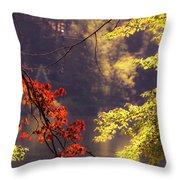 Cool Vermont Autumn Day Throw Pillow