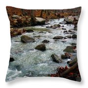 Cool Water Throw Pillow