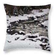 Cool Winding River Throw Pillow