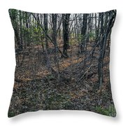 Coolidge Throw Pillow