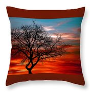 Cooling Down Throw Pillow