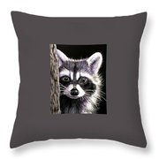 Coon Throw Pillow by Janet Moss