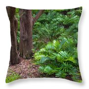 Coontie  Florida Arrowroot Or Indian Breadroot Throw Pillow