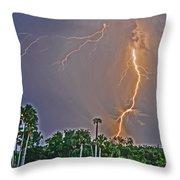 Cooper's Bayou Stricken Throw Pillow