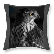 Coopers Hawk Bw Throw Pillow