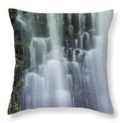 Coopey Falls Throw Pillow