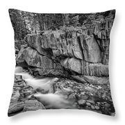 Coos Canyon Black And White Throw Pillow