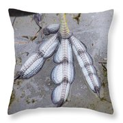 Coot Foot Throw Pillow