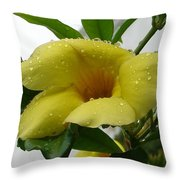 Copa De Oro Throw Pillow