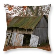 Copening Hill Shed Throw Pillow