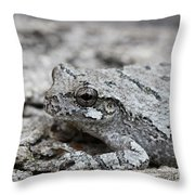 Cope's Gray Tree Frog #5 Throw Pillow