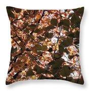 Copper Beech Throw Pillow