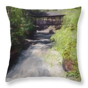 Copper Falls State Park Wisconsin. Throw Pillow