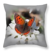 Copper Glow - Butterfly Throw Pillow