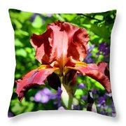 Copper Iris Squared 5 Throw Pillow