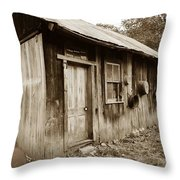 Copper Valley Shack Throw Pillow