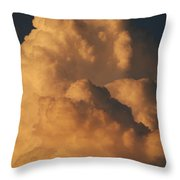 Coppermouth Throw Pillow