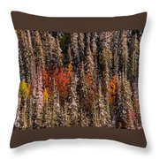 Copse Of Color  Throw Pillow