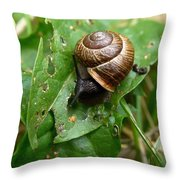 Copse Snail Throw Pillow