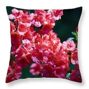 Coral Azaleas Throw Pillow
