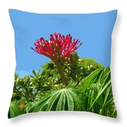 Coral Bush Jatropha Multifida With Flower And Fruit Throw Pillow