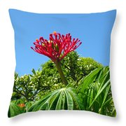 Coral Bush With Flower And Fruit Throw Pillow