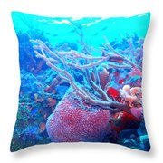 Coral Candy Throw Pillow