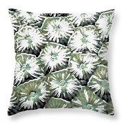 Coral Close Up  Throw Pillow