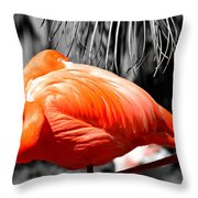 Coral Creation Throw Pillow