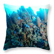 Coral Crossbeam Throw Pillow