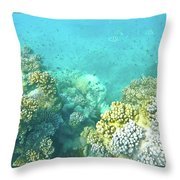 Coral Throw Pillow by Debbie Cundy