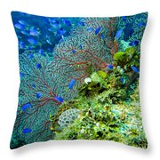 Coral In Truk Throw Pillow