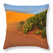 Coral Morning Throw Pillow