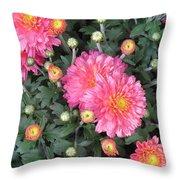 Coral Mums 2 Throw Pillow